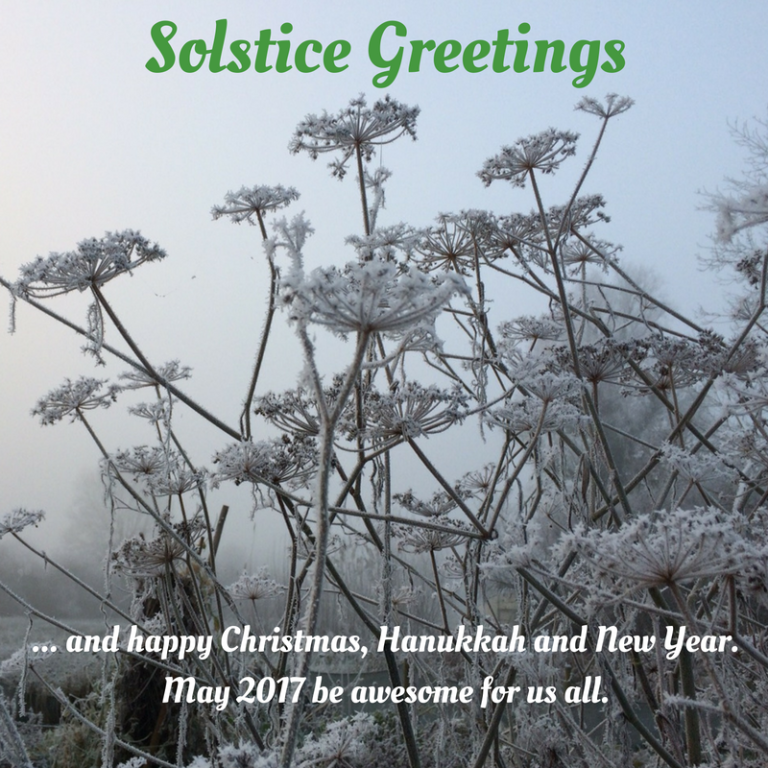 Winter Solstice check in 2016